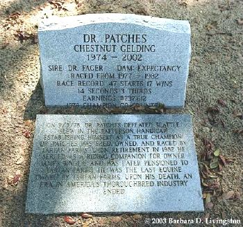 Grave of Dr. Patches